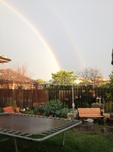 rainbow, garden, melbourne, thornbury,