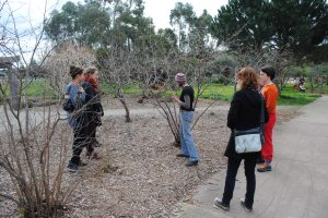 touring the food forest