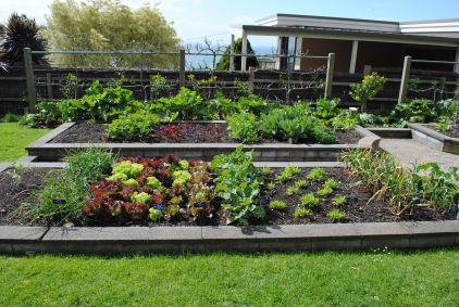 20sqm garden at Heronswood