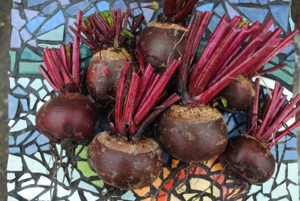 Beets tops chopped
