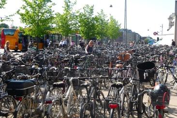 Main bike path at Oesterport Railway Station Copenhagen