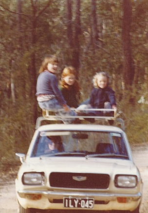 Roof rack ride crop