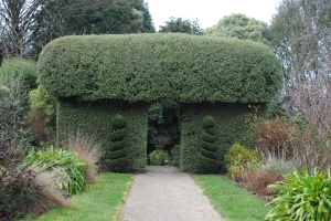 Topiary arch